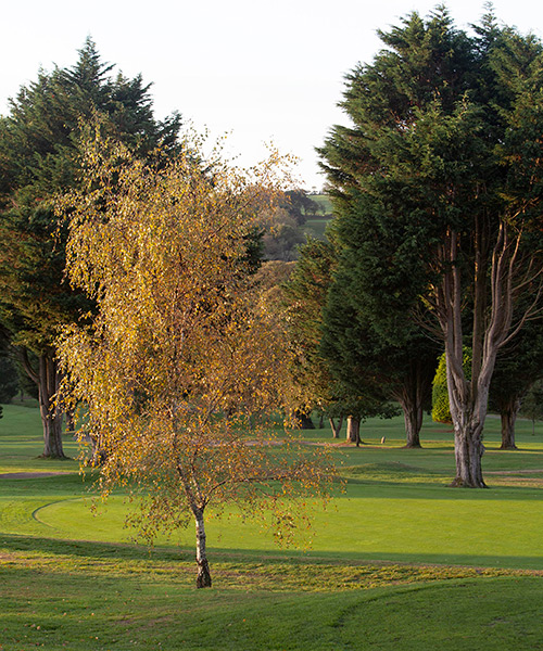 elfordleigh golf enquiry