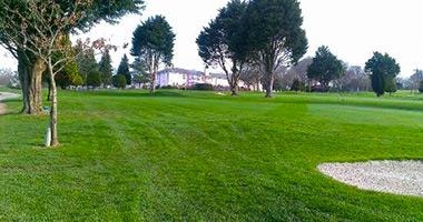 elfordleigh golf membership